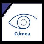 córnea