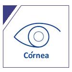 img-cornea2