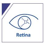 img-retina2 copiar